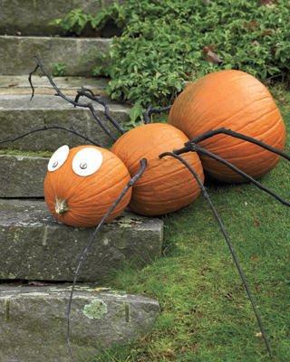 halloween tök dekoráció hangya pumpkin decoration