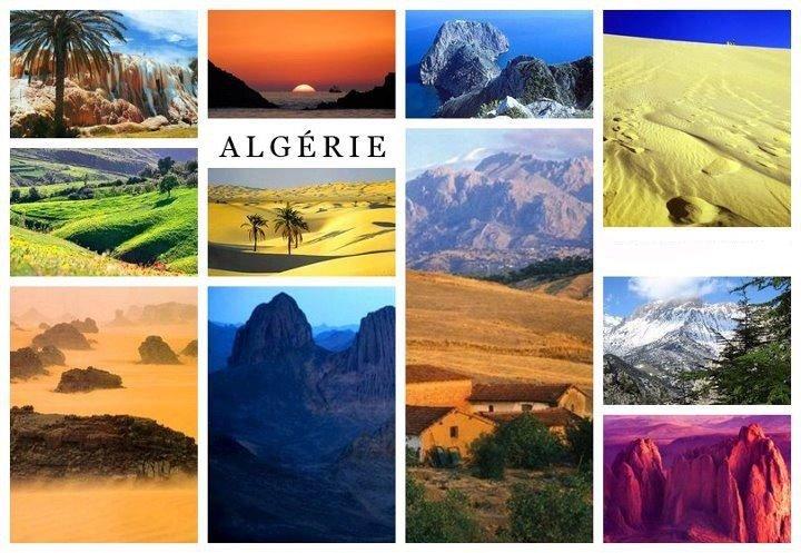 oldal algériai lány találkozik)